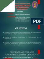 seminario-1-bases-moleculares.pptx