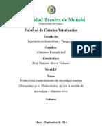 Informe de Microalgas