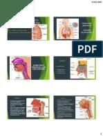 Clase-1-PDF