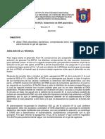 PLÁSMIDO.docx