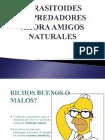 PARASITOIDES Control Biológico