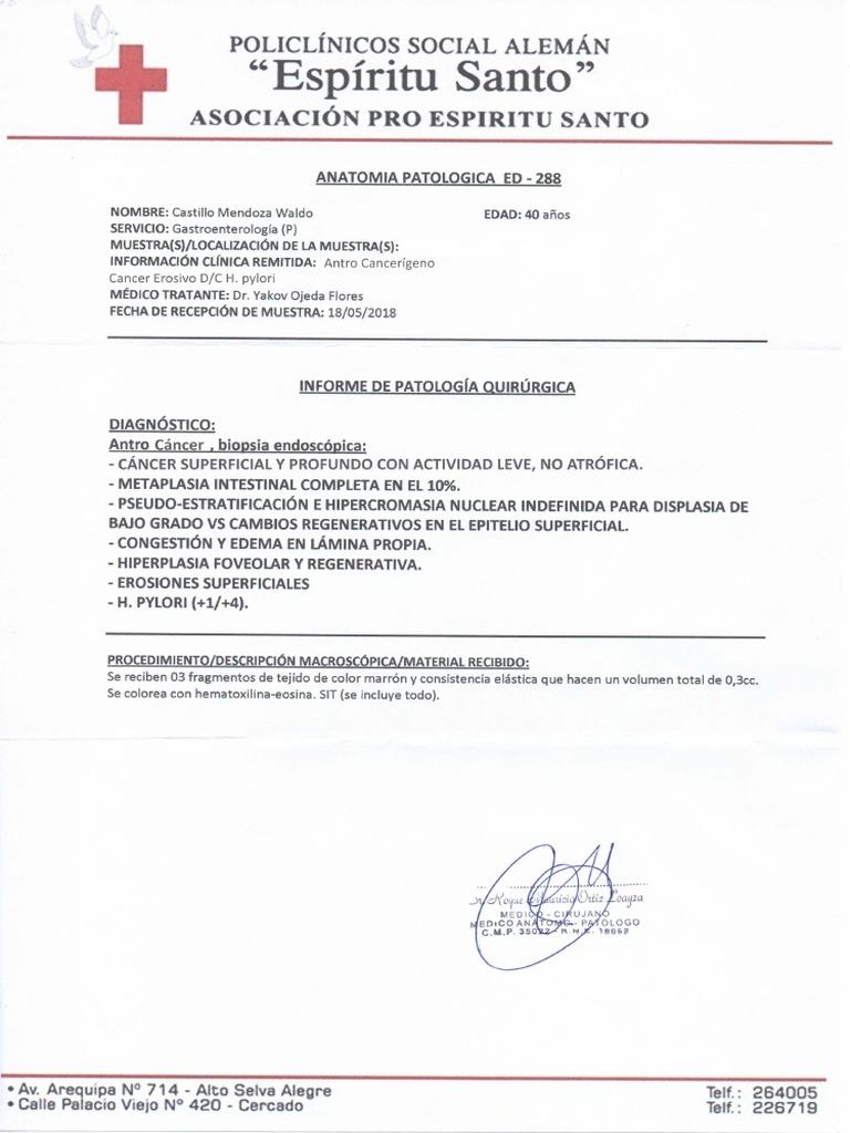 Contemporáneo Gunstream Anatomía Y La Fisiología Sexta Edición ...