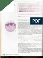 El Cancer y deber.pdf