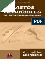Gastos_deducibles.pdf
