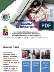 FUNDAMENTOS_DE_BALISTICA_PARA_DERECHO.pdf