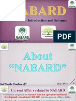 NABARD Lecture.pdf