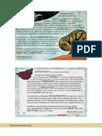 Authenticity_download-1.pdf
