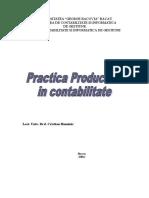 Practica Productiva in Contabilitate