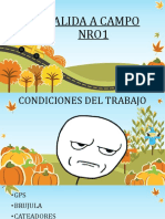 SALIDA A CAMPO NRO1.pdf