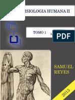 Guia UNIDAD I (Locomotor) Morfofisiologia II - UNEFM de Samuel Reyes