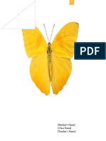 Butterfly Document Template