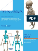 VisibleBody - Types of Bones eBook - 2018