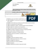 Ficha Formativa Nº5