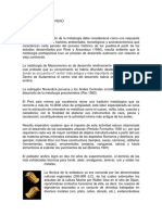 Metalurgia en El Peru