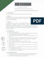 Anexo-Resolución-N°393-2017-Directiva