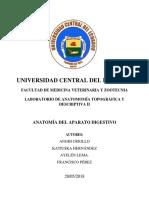 INFORME-APARATO-DIGESTIVO