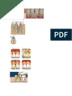 Lexico de Radiologia de La a-K Radiologia (2)-1