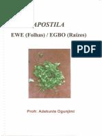 Apostila Ewe (Jimy).pdf