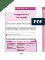74378143-Purgadores.pdf