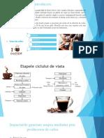PreZENTARE-CAFEA