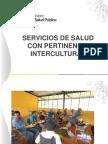 SS Pertinencia Intercultural