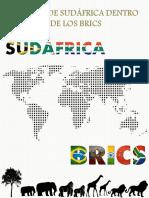 El Papel de Sudafrica Dentro de La BRICS