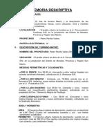 Memoria Descriptiva- Pedro Revilla