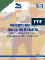 Compendio_guias_de_bolsill_.2011