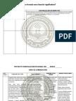 2. INSUMOS ELABORACION PCI%2c SITIUACIONES SIGNIFICATIVAS ETC.docx