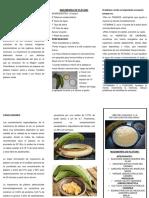 PROYECTO DE PLATANO (1).docx