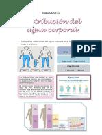 fisio agua 10.pdf