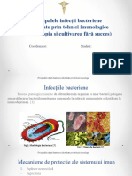 Principalele_infecii_bacteriene_identif.ppt