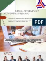 04 - La Actividad Ocupacional Profesional en México