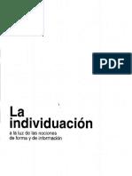 G. Simondon - La Individuación Cap. 1 Materia y Forma