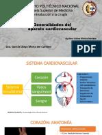 Anatomia Cardio