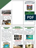 TRIPTICO DE MEDIO AMBINTE.docx