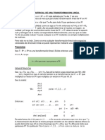 Representacion Matricial.docx