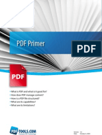 Whitepaper PDF Primer En