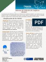 Capsulas DDHH No 40 - Medios Alternos de Soluci_F3n Confli