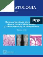 Guias OA SAR 2010.pdf