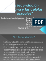 La Fecundación Humana y Las Células Sexuales