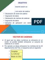 Cadenas Vectores en c++