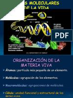 Bases Moleculares de La Vida_BG_gus_4
