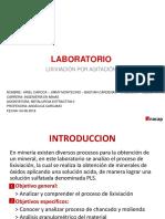 Ppt Final Metalurgia Extractiva II
