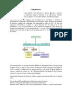 carbohidratos_fibradietetica