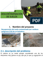 Plan de Descontaminación final CA.pptx