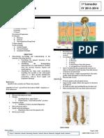 Anatomy 2.1 Deep Back - Dr. Calilao