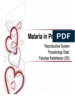 Rps138 Slide Malaria in Pregnancy