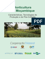 Horticultura Em Moçambique PDF