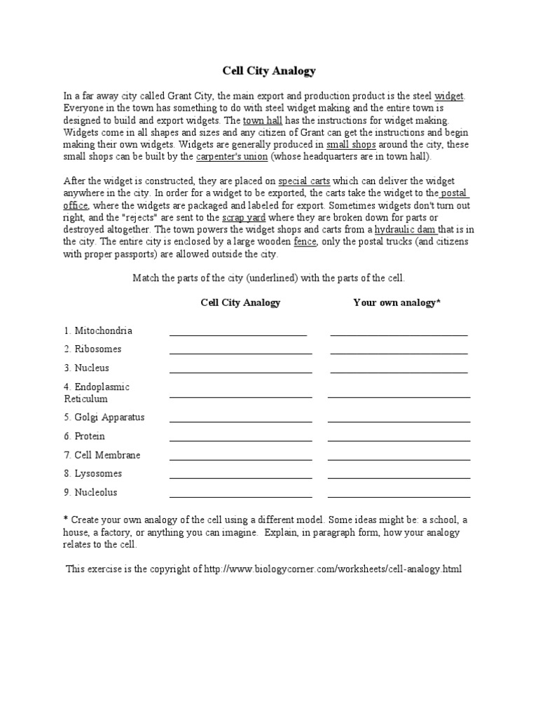 All Worksheets analogies worksheet answers pictures Free